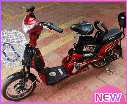 电动自行车盗抢险